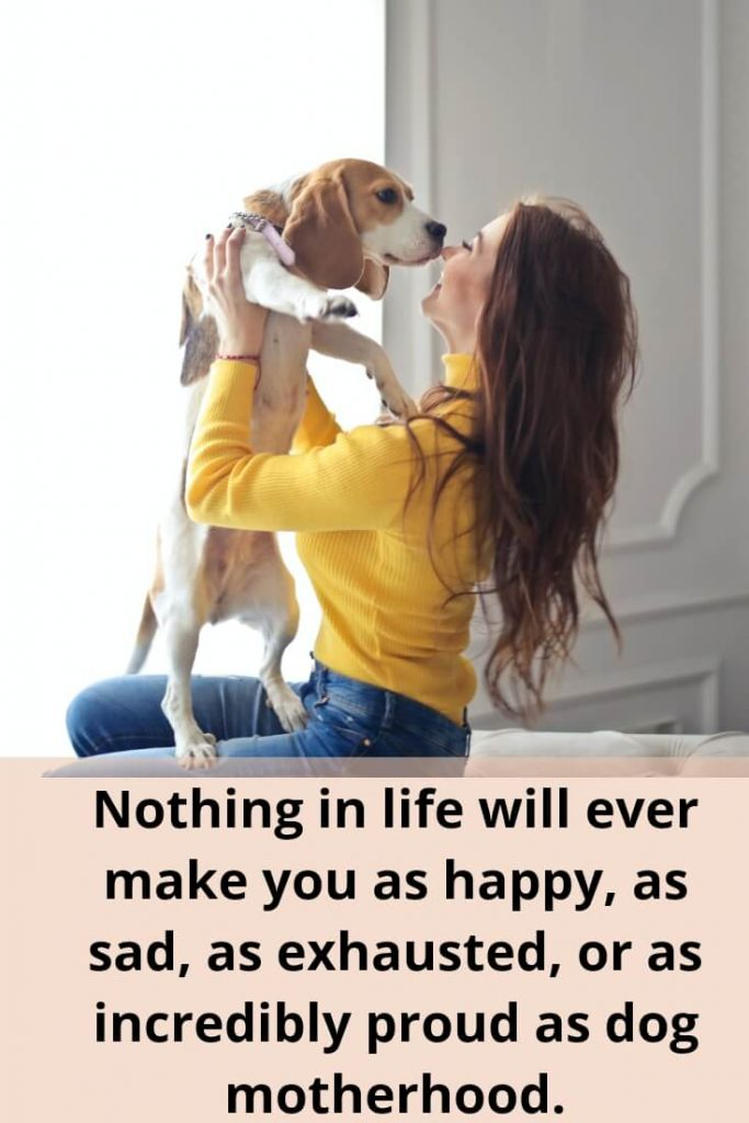 Nothing in life will ever make you as happy, as sad, as exhausted, or as incredibly proud as dog motherhood.
