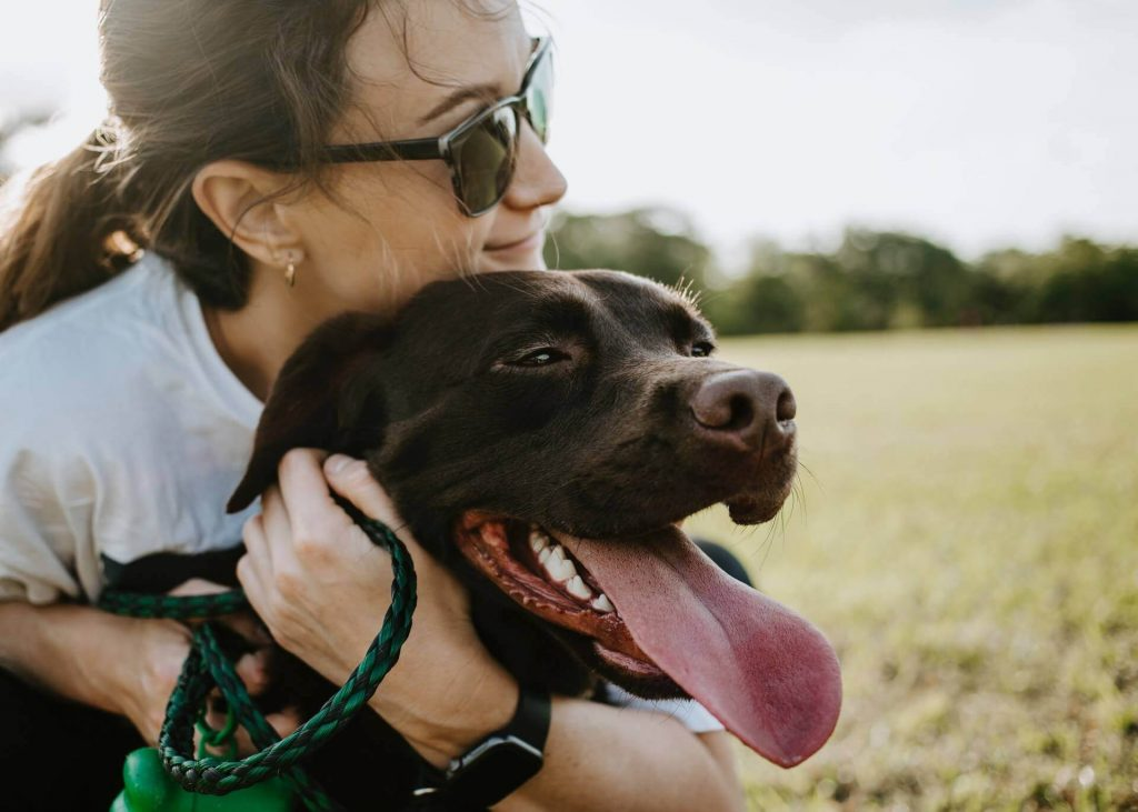 15 Best Dog Mom Quotes That Will Warm Your Heart